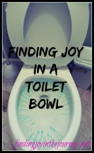 findingjoyinatoiletbowl