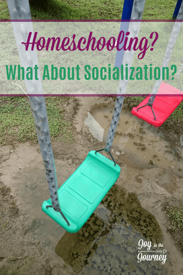 "I Can't Homeschool Because My Kids Need Socialization... really? Homeschool kids ARE socialized. If anything, we are too social because we try to make up for the perceived ""lack"" of socialization."