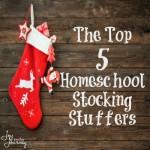 5 Homeschool Stocking Stuffers