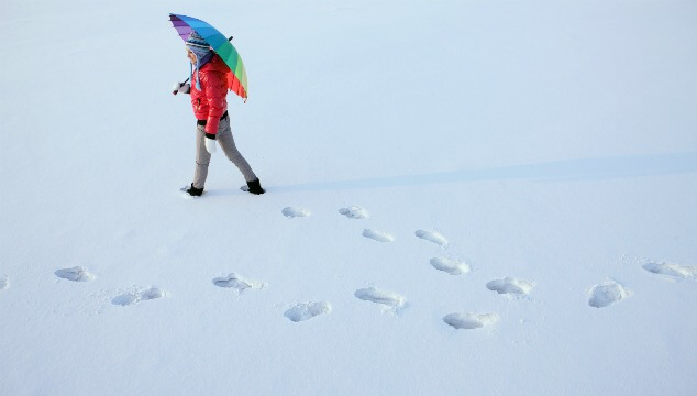 The Case for Snow Days