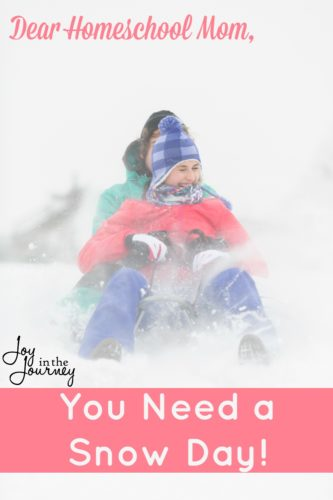 As a homeschool mom who has been at this for while, I am beginning to see the case for snow days. And, I encourage you to consider a few of these possibilities yourself when the white stuff hits your neighborhood.