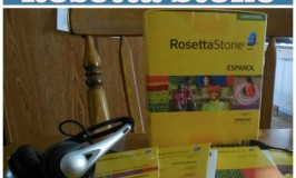 Independent Learning with Rosetta Stone