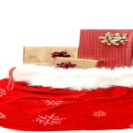 100 + Christmas Gift Ideas for Homeschool Families