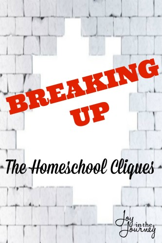 Breaking Through the Homeschool Cliques