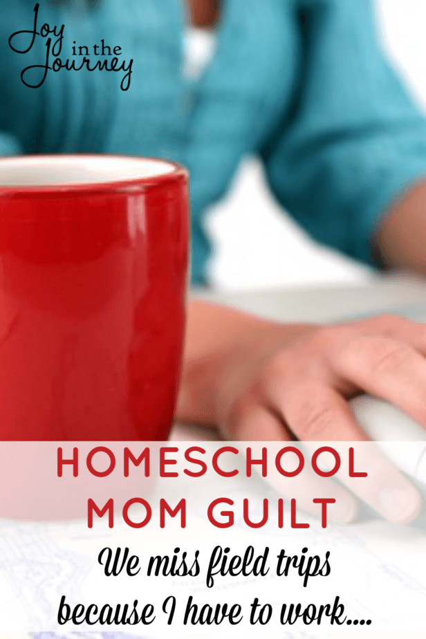 Homeschool mom guilt. We all deal with it right? As a working homeschool mom, I deal with homeschool mom guilt. And then, I realized something. We all have struggles and trials and reasons that we miss field trips. None of them justify homeschool mom guilt.