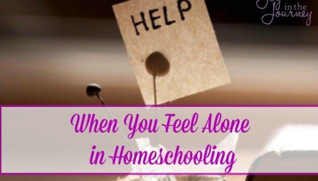 When You Feel Alone in Homeschooling