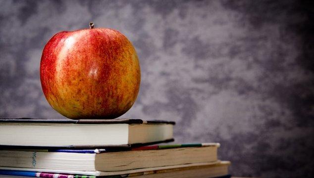 JHE7: Our Homeschool Curriculum